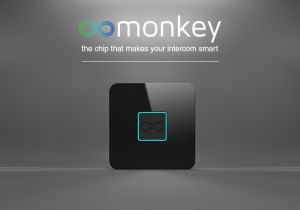 monkey1